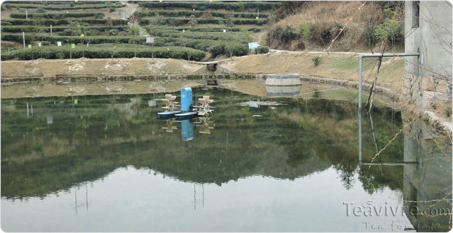 mountain water for irrigation