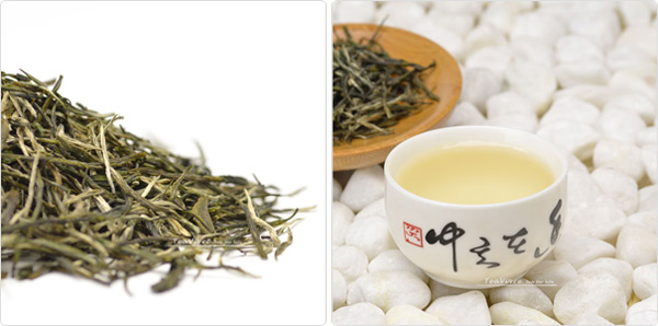 chinese spring green tea 2013 Xin Yang Mao Jian Green Tea